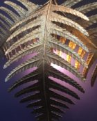Villaverde_london_fern_wall_light